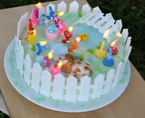 именинный торт со свечами
